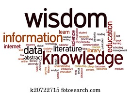 Data information knowledge wisdom word cloud