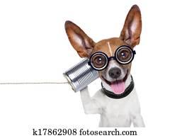 hund, telefon