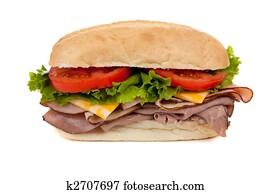 A submarine sandwich on white