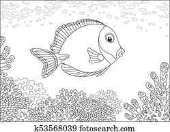 Surgeon fish on a coral reef