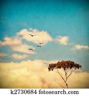 Dreamy Sky and Tree