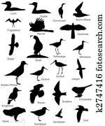 Bird Silhouettes Logos