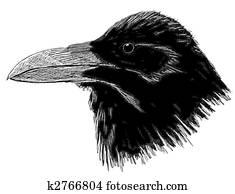 18087b202d44b Crow Stock Illustration | k0698889 | Fotosearch
