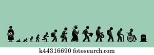 Life cycle and aging process.