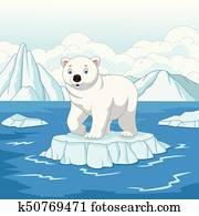 Cartoon polar bear isolated on ice floe