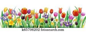 anordnung, mit, mehrfarbig, frühjahrsblumen
