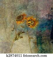 Blown Sunflowers