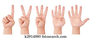 Child finger numbers