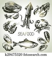hand, gezeichnet, skizze, satz, von, seafood., vektor, abbildung