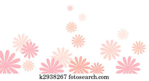 pink daisy flowers background