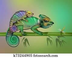 two camouflaged chameleons
