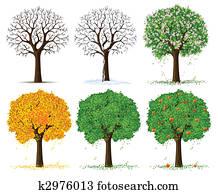 silhouette of seasonal tree