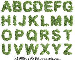 Broccoli alphabet on white background