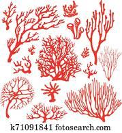 Set of underwater coral reef plants.