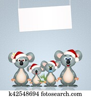 koalas at Christmas
