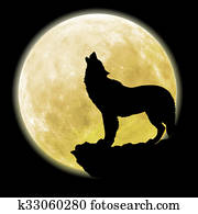 silhouette of a wolf in front of th