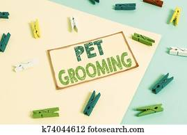Writing note showing Pet Grooming. Business photo showcasing hygienic care and enhancing the appearance of the pets Colored clothespin paper reminder with yellow blue background.
