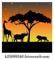 Night in the African savanna