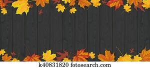 Dark Wood Autumn Foliage Header