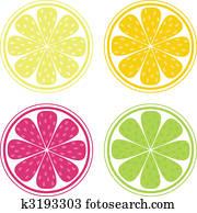 zitrusfrucht, hintergrund, vektor, -, lemon,, limette, und, orange