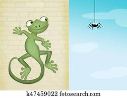 gecko and spider