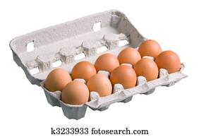 Eggs in Carton