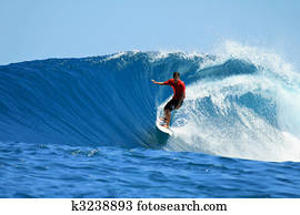 Surfer riding fast on perfect tropical blue wave