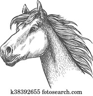 Galloping Horse Of Andalusian Breed Sketch Symbol