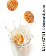 Three cookies biscuits falling into a glass mug full of fresh milk, splashing. close up view, On white background, with clipping path included.