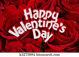 Happy Valentines Day on roses