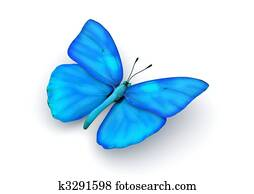 Blue Butterfly Isolated
