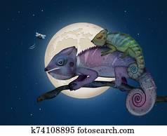 chameleons on the branch in the moonlight
