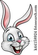 Cartoon White Bunny Rabbit Face