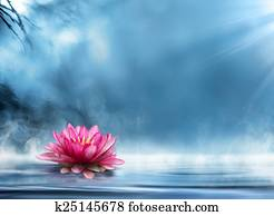 spirituality zen