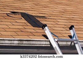 Damaged Roof Shingles Repair