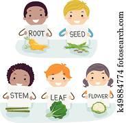 Stickman Kids Vegetable Types Illustration