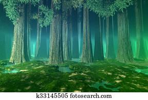 Huge trees green misty forest