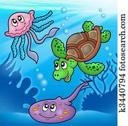Various marine animals in sea