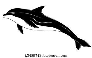 Dolphin, tattoo