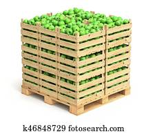 Green apples in wooden crates on the pallet