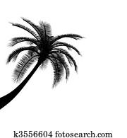 Black on white palm tree