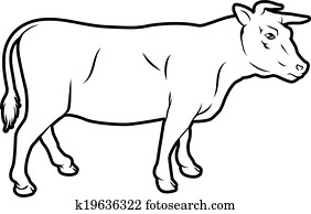 Beef cow illustration