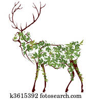 Deer illustration