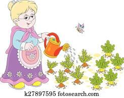 Granny watering vegetables
