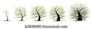leben, stadien, von, tree:, childhood,, adolescence,, youth,, adulthood,, hohes alter