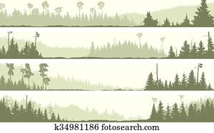 Banners of misty coniferous forest.