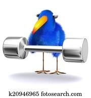 3d Bluebird lifting weights