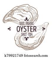auster, emblem,, meeresfrüchte, organische, bestandteile, menükarte, etikett, skizze