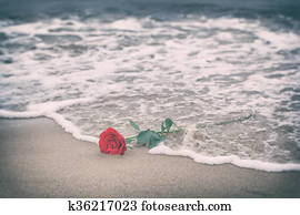Waves washing away a red rose from the beach. Vintage. Love