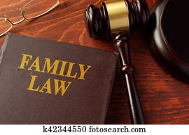 Book with title family law